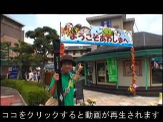 109awashima